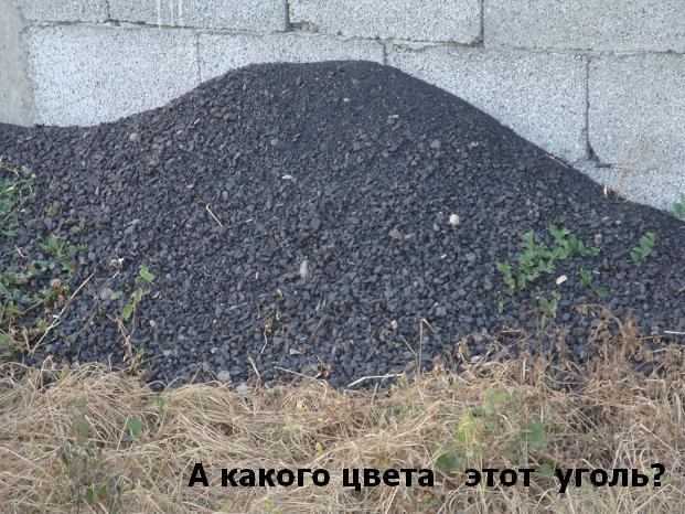 оттенки темного цвета