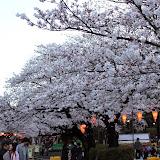 2014 Japan - Dag 1 - marjolein-IMG_0176-0104.JPG