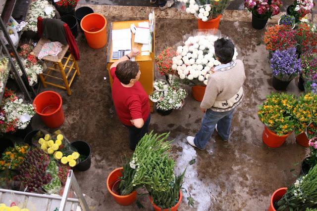 Mercat de Flor i Planta Ornamental de Catalunya - IMG_7311.JPG
