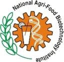 National Agri-Food Biotechnology Institute (NABI) , Career In Banking, Banking In, Government Job In, Banking Jobs, Ibps Po Exam, Ibps Bank Exam, Bank Po Exam, Bank Clerk Exam, Best Banking Institute, Education Franchise, Franchise Business, Coaching For Po Exams, Coaching For Bank Clerk, Coaching For Railway, Coaching For B.Ed, Coaching For Nda, Coaching For Cds, Coaching For Afcat, Ibps Coaching, Cwe Coaching, Government Exams Coaching Centers, Education Institutions, Coaching Classes, Bank Po Coaching Institute, Ssc Coaching, Ssc Cgl Coaching Center, Bank Po Coaching Center, Railway B.ED courses, IBPS-CWE Courses, Bank P.O Courses, Bank Clerk Courses, institute franchise , coaching institute franchise , educational franchise , ssc coaching franchise , bank po franchise, education franchise in india, education franchise india   , education franchise , Bank PO coaching , Best banking coaching, Best SSC Coaching , Best Bank PO Coaching, Best Franchise, Best Education Franchise , sbiindia.org , state banking institution of india