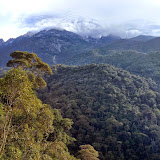 Gunung Kinabalu, Sabah (Malaisie), 9 août 2014. Photo : T. Boucher
