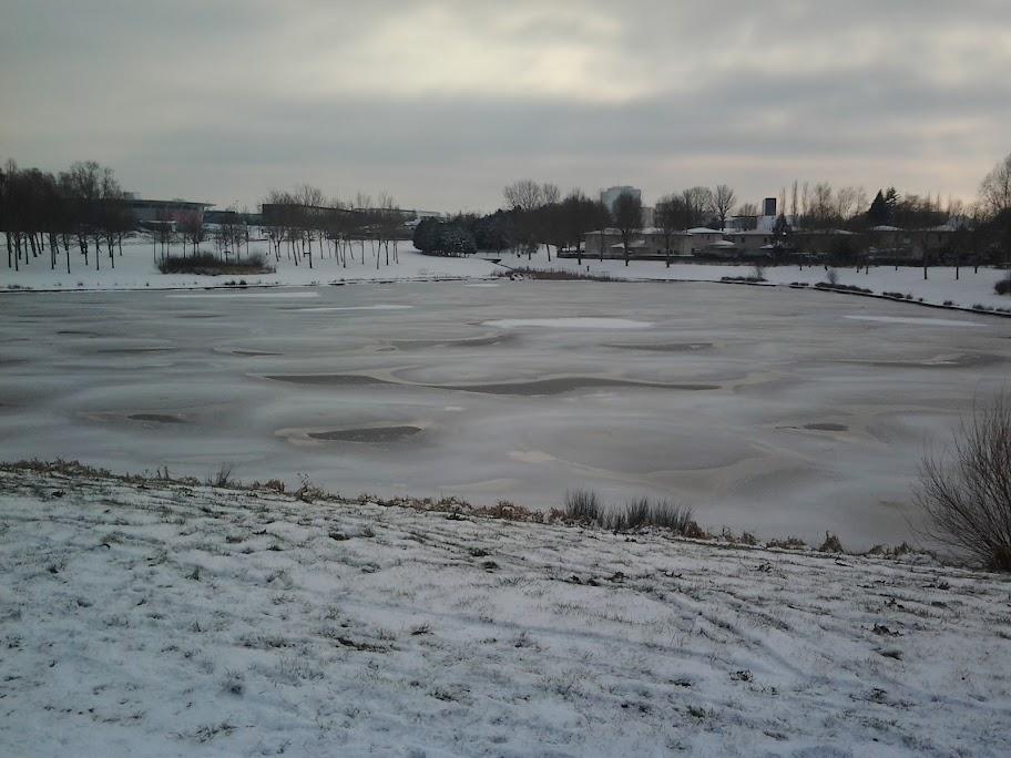 Wouuu Ouuuu y neige !!! 2012-02-05%252014.50.23