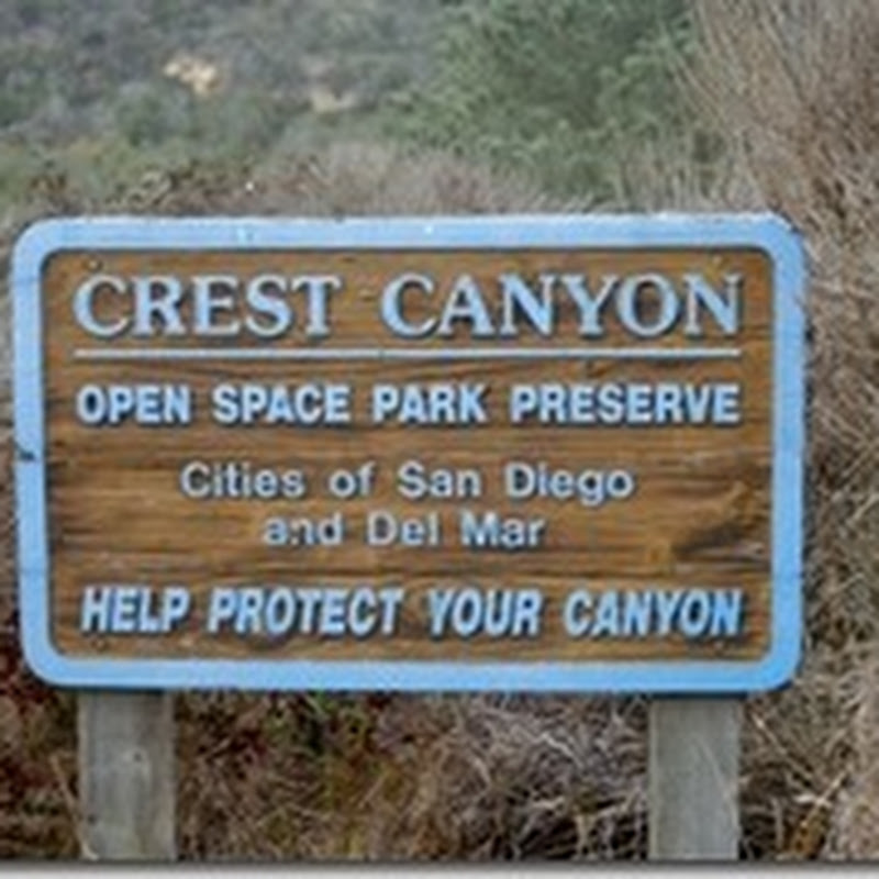 Crest Canyon - Urban Hiking San Diego