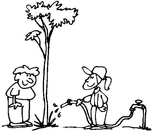 Niños que riegan un árbol