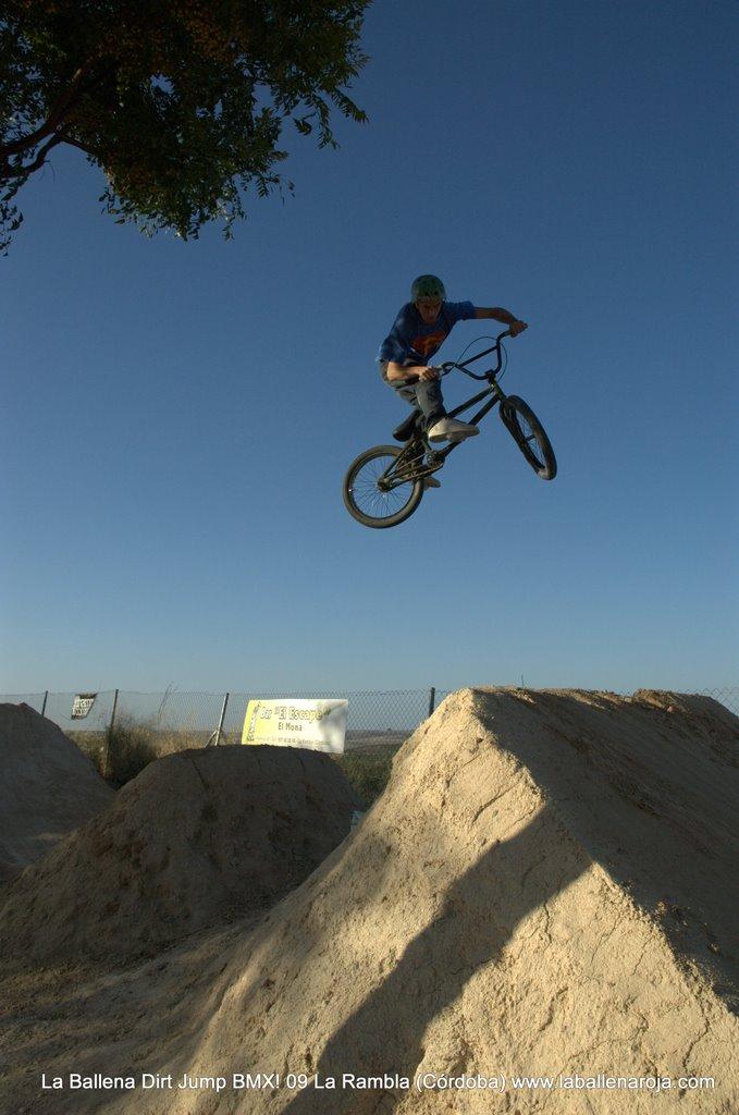 Ballena Dirt Jump BMX 2009 - BMX_09_0109.jpg