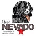Providencia mediante la cual se nombra a Harold José León Blanco, como Director de la Oficina de Atención al Ciudadano de la Fundación Misión Nevado