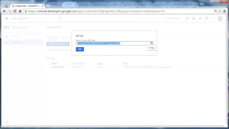 Web Push Notification Google Dev Console GCM Credentials Server Key Display
