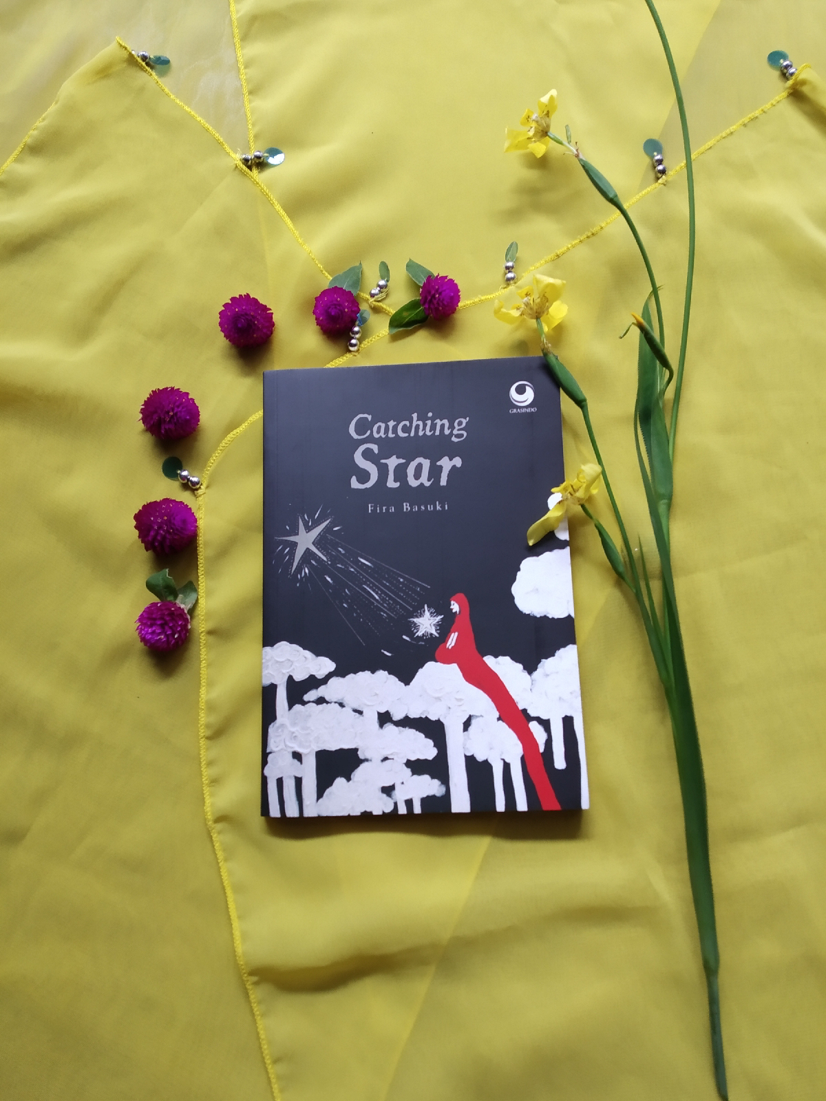 Review Novel Catching Star Karya Fira Basuki