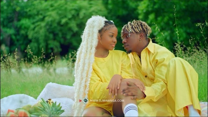 VIDEO | Rayvanny Ft. Zuchu – Number One