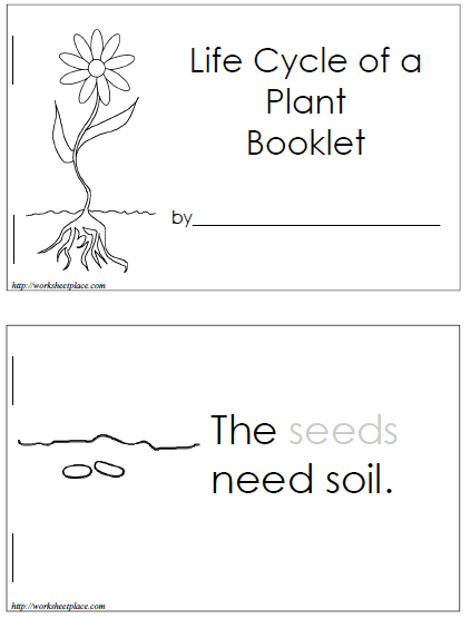 Dandelion Seed Diagram Plant Life Cycle Works...