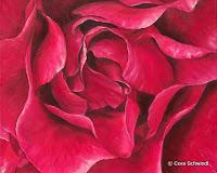 'Rose dunkelrosa', Öl auf Leinwand, 55x45, 2004, verkauft
