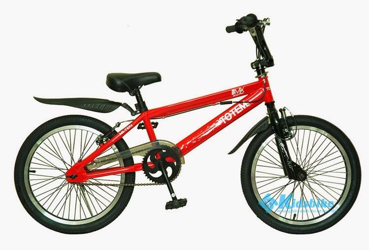 Xe đạp Totem TM1035-20