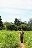 Izlaz iz džungle.jpg