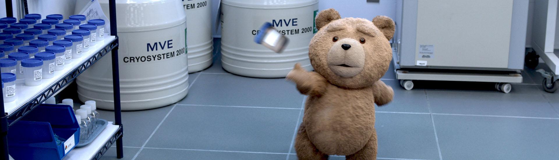 Baner filmu 'Ted 2'