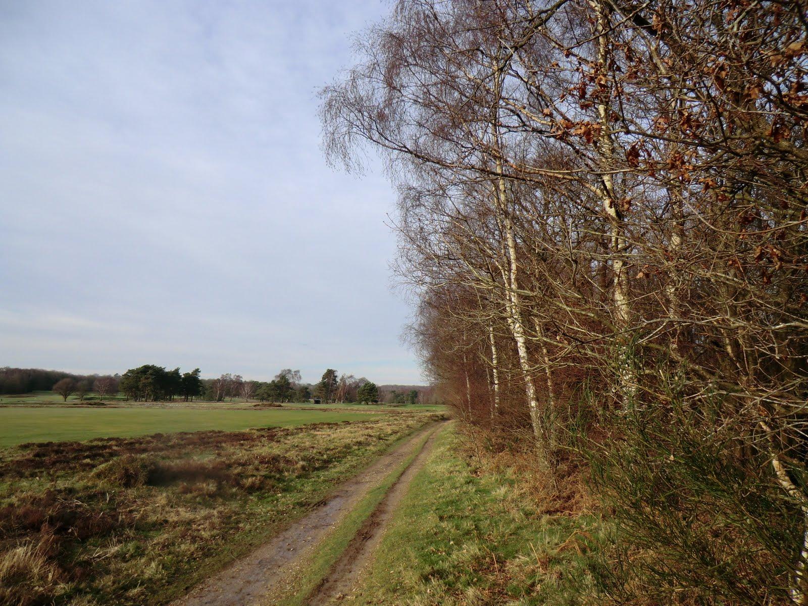 CIMG9905 Alongside Walton Heath golf course