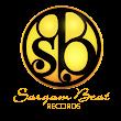 sargam Beat R