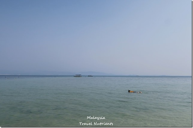 沙巴亞庇馬穆迪島 (23)
