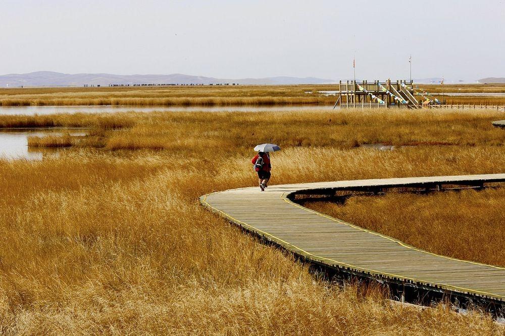reed-lake-1