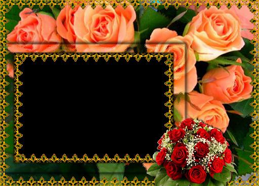 flower frame wallpaper Photo