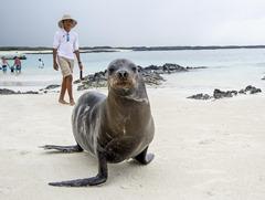 Ecuador-Galapagos-SanCristobal-180223-0220-ToWeb