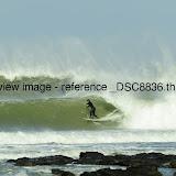 _DSC8836.thumb.jpg