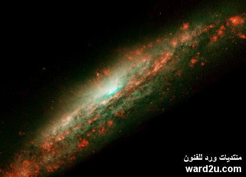 حقيقة الارقام فى القران و الكون و السنه