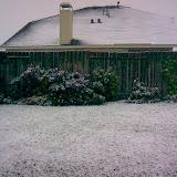 Snow Day - imagejpeg_0.jpg