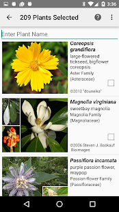 Alabama Wildflowers- screenshot thumbnail