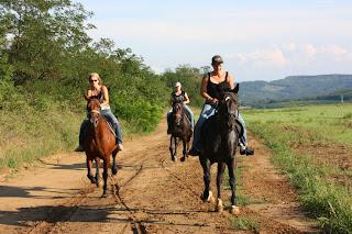 paardrijden 005