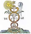 Page Of Das Geheimniss Der Hermetischen Philosophie 1770