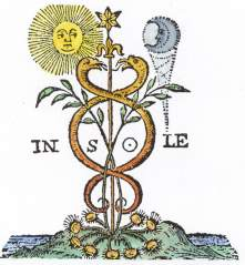 Page Of Das Geheimniss Der Hermetischen Philosophie 1770, Alchemical And Hermetic Emblems 2
