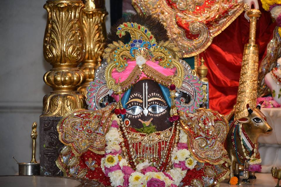 ISKCON Ujjain Deity Darshan 04 April 2016  (14)