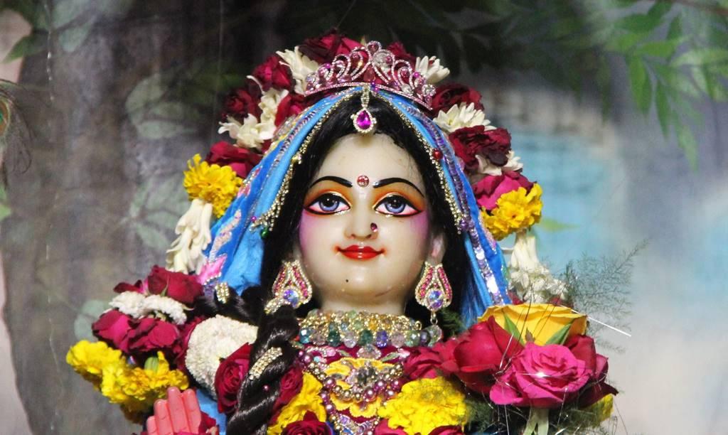 ISKCON Delhi Deity Darshan 02 Feb 2016 (15)