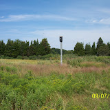 Kestrel-Bat Houses - pic2.jpg