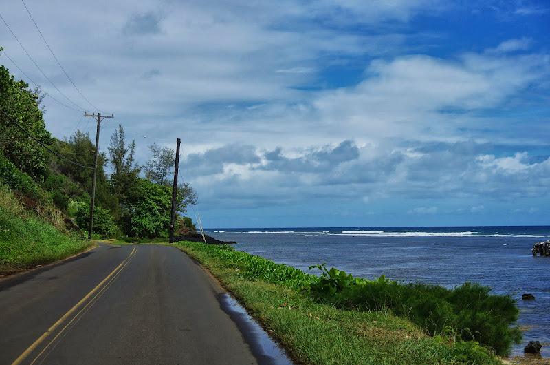 06-25-13 Annini Reef and Kauai North Shore - IMGP9315.JPG