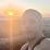 Amed Vazquez Perez's profile photo