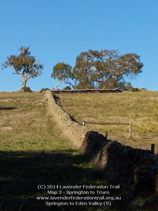 Springton to Eden Valley (9)