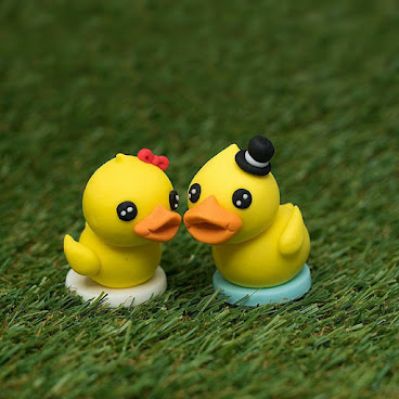 DUCKLINGS COUPLE