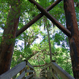 04-04-12 Hillsborough River State Park - IMGP9691.JPG