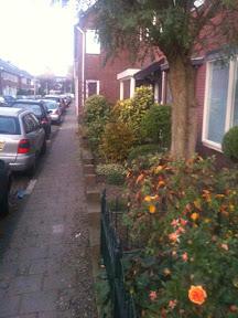 Abraham Herman Frankenhuis en Mathilde Rosette Frankenhuis-Frenk - Maaierstraat 33  - Stolpersteine Enschede