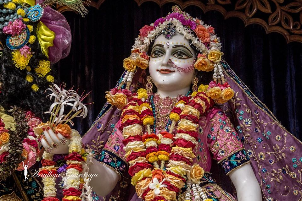 ISKCON Mayapur Deity Darshan 02 Feb 2016 (48)