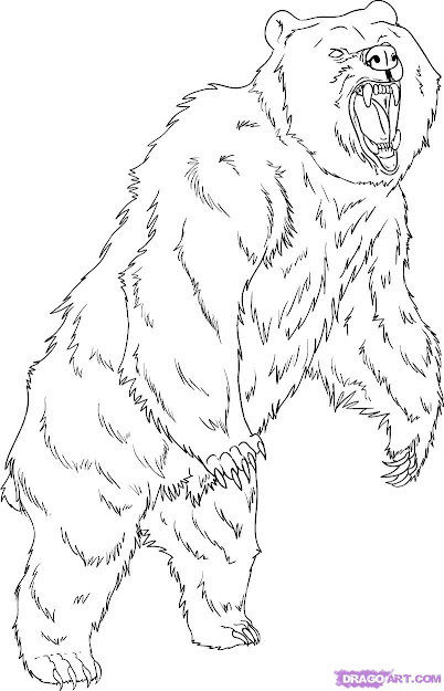 Grizzly Bear Coloring Pages  How To Draw Grizzly Bear Step By Step