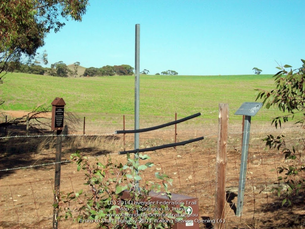Truro to Sturt Highway-2011 Walking Season Opening (6)
