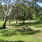 Katoomba Falls Park (17110)