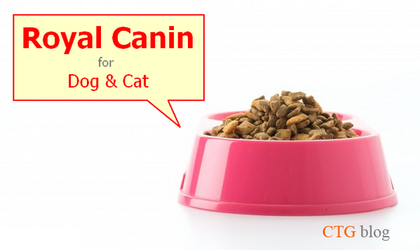Phân tích và phân loại thức ăn hạt khô Royal Canin cho chó mèo