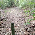 End of Kangaroo Point Road (59198)