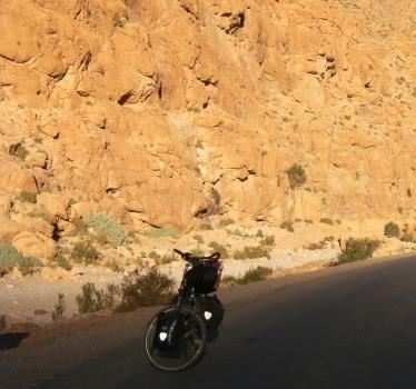 Panther Dominance Trekking in der Todra-Schlucht, Marokko
