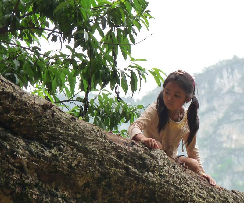 Chine . Yunnan BA MEI 2 - P1260996.JPG