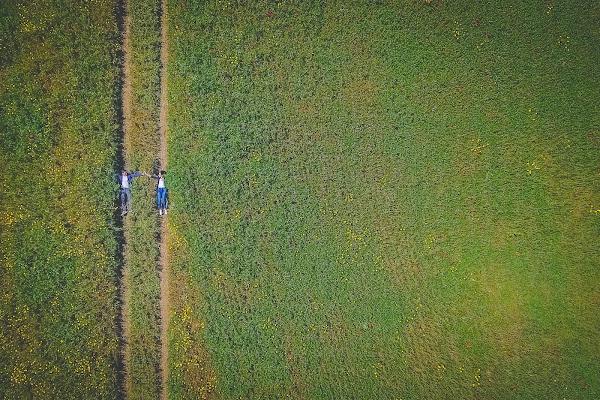 a field di AdrianoPerelli