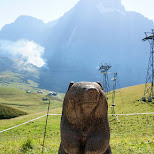 hallo and welcome to the First Mountain in Switzerland in Grindelwald, Bern, Switzerland